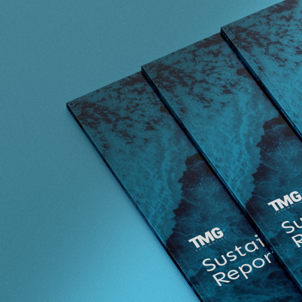 O relatório sustentável da TMG Automotive